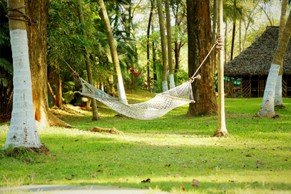 Experiencing the beauty of nature by relaxing in a hammock | Kairali-The Ayurvedic Healing Village