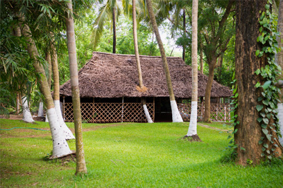 A secluded room amidst nature for peaceful practise of Yoga and Meditation | Kairali-The Ayurvedic Healing Village