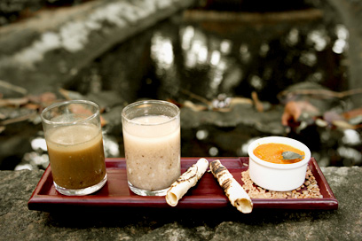 Made with the organic ingredients from the herbal garden | Kairali-The Ayurvedic Healing Village