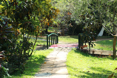 A perfect evening stroll in this pathway for a fit and healthy body | Kairali-The Ayurvedic Healing Village