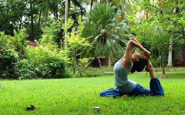 Yoga & Meditation Packages