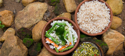What is Ayurvedic Food?
